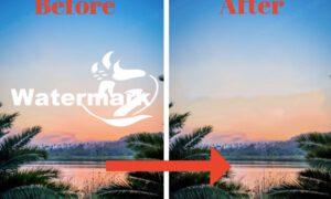 Best Watermark Remover Tools